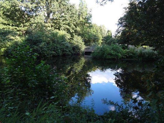 Tiergarten: в парке