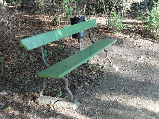 Tiergarten: забавная скамейка в парке