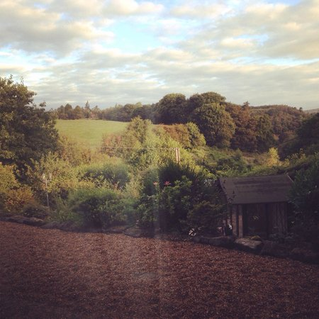 The Warren B&B: View from our room! Simply beautiful!