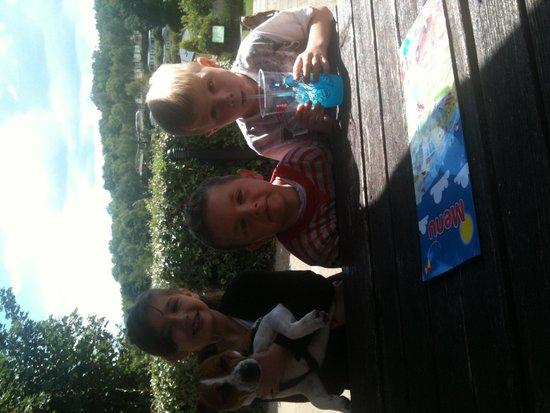 Coghurst Hall Holiday Park - Park Holidays UK: Kids and dog having fun