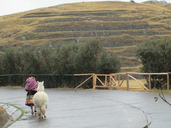 Sacsayhuaman: cholita chegando pra foto