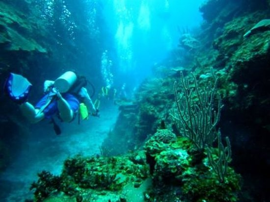 Ramon's Village Resort: Finger Canyons - Ramon's Dive