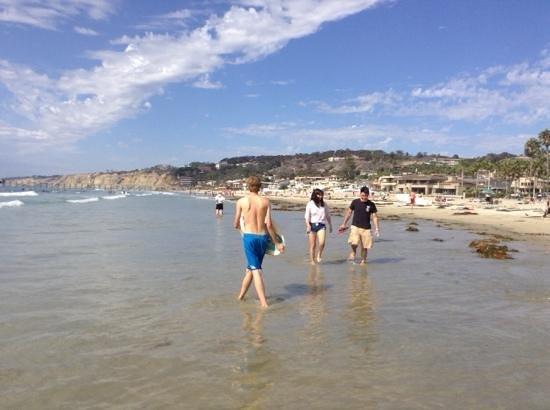 La Jolla Shores Park: la jolla beach San Deigo
