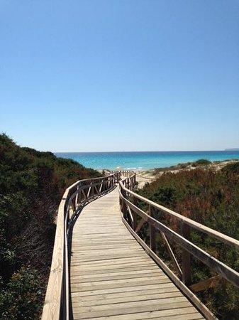 Strand Playa de ses Illetes: Chegando a praia..