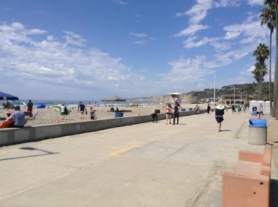 La Jolla Shores Park: La Jolla Beach San Diego