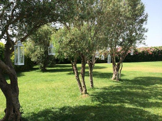 Hotel Borgo Pantano: Orchard