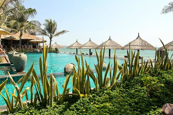 Lotus Village Resort : Бассейн около пляжа