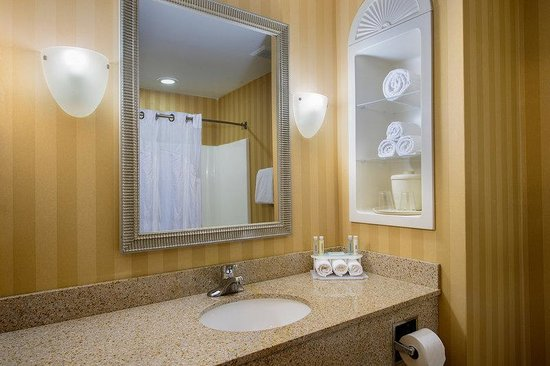 Holiday Inn Express Hotel & Suites Chester - Monroe - Goshen: Guest Bathroom