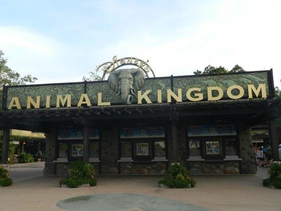 Walt Disney World: Animal Kingdom