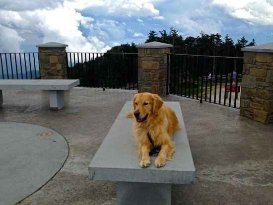 Mount Mitchell State Park: Mt. Mitchell Observation Deck - as you can see its a place to rest and take in the views!