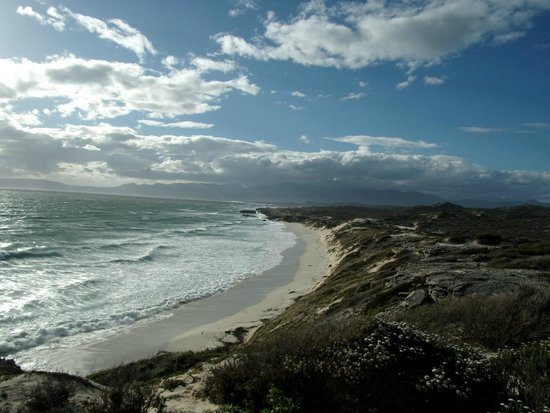 Grootbos Private Nature Reserve: Nearby beaches