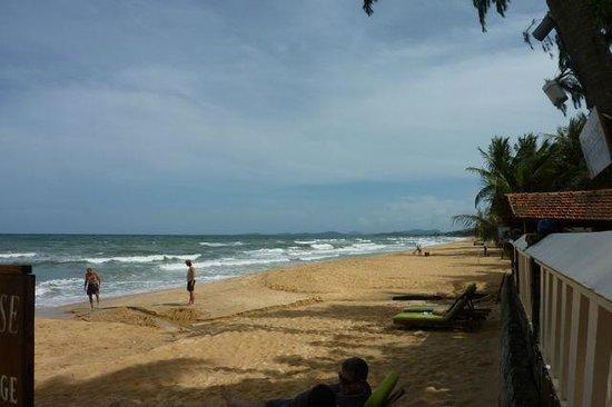 Cassia Cottage: plage