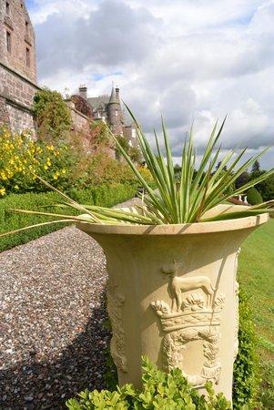 Drummond Gardens: Garden