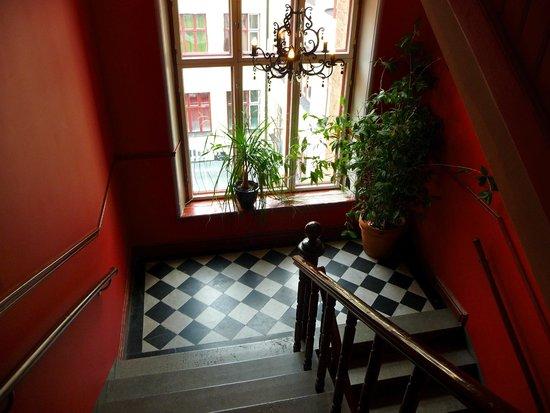 Hotel Hellsten: escalier hotel