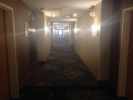 Holiday Inn Express Canton: Hallway