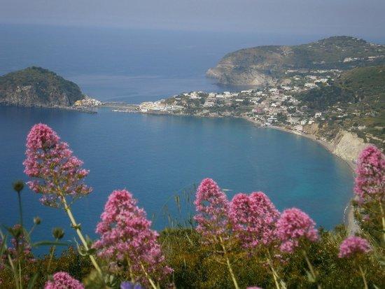 Hotel Villa Bernardina: Blick vom Monte Panza auf S. Angelo