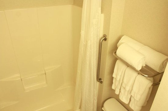 Holiday Inn Seattle Downtown: Guest Bathroom-Accessible