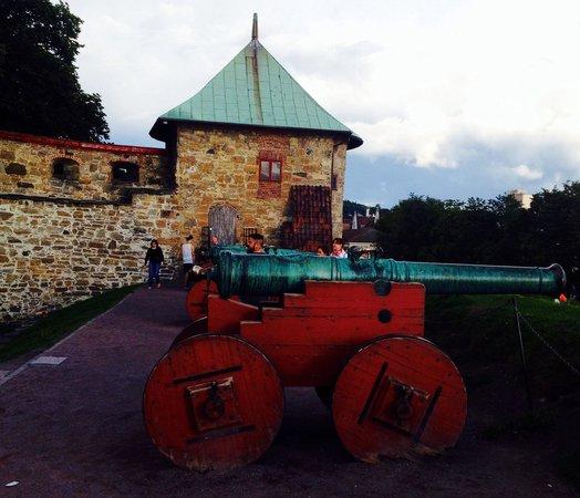 Akershus Castle and Fortress (Akershus Slott og Festning): Пушка