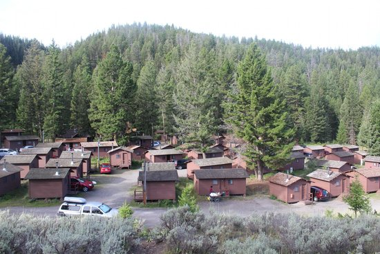 Roosevelt Lodge Cabins : view of cabins