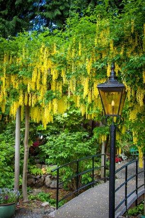Butchart Gardens: Entrance to the gardens