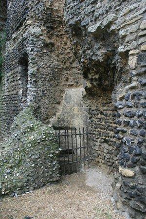 Canterbury Norman Castle: Canterbury Castle
