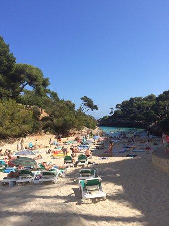 AluaSoul Mallorca Resort: Beach aug 2014 - plenty of shade