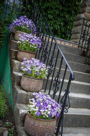 The Butchart Gardens: Flower pots
