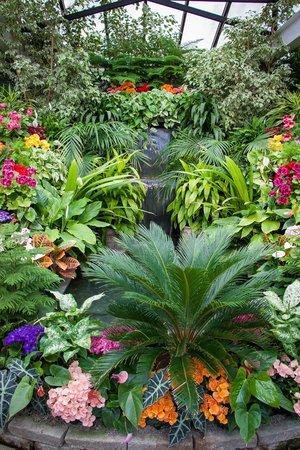 The Butchart Gardens: Waterfall