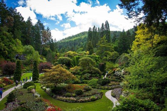 The Butchart Gardens: Sunken Gardens