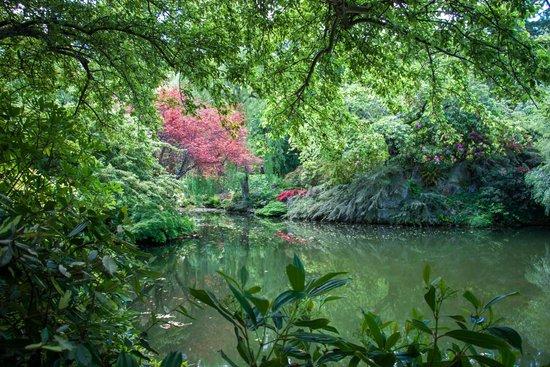 Butchart Gardens: Landscape