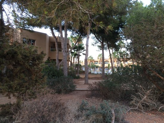 Grupotel Santa Eularia Hotel: The walk over dirt to sea and town