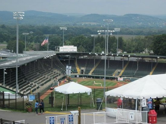 World of Little League: Peter J. McGovern Museum and Official Store: Scenic view of the stadium