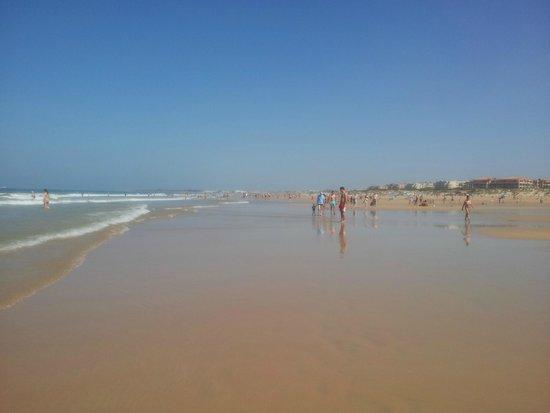 Iberostar Royal Andalus: La playa del hotel