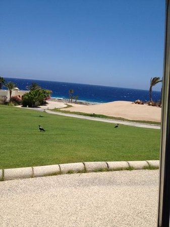 The Oberoi Sahl Hasheesh: photo from my room