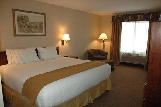Holiday Inn Express Hotel & Suites Hill City: King Bed Guest Room
