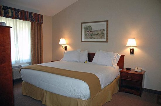 Holiday Inn Express Hotel & Suites Hill City: Executive Suite Room