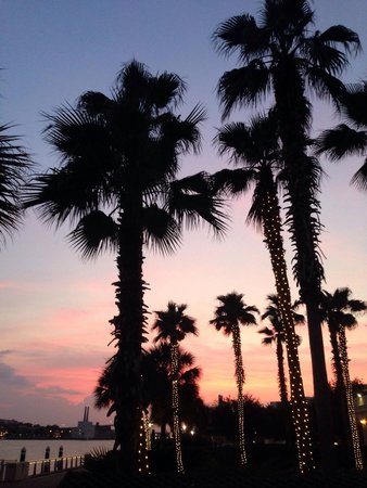 Westin Savannah Harbor Golf Resort & Spa: Sunset at the Westin