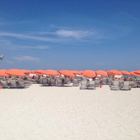 Royal Palm South Beach Miami, A Tribute Portfolio Resort: beach