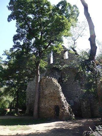 Margaret Island (Margitsziget): Ruinas Iglesia Franciscana.