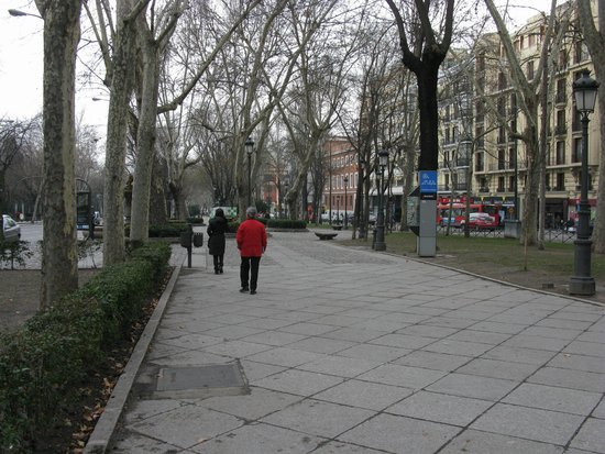 Paseo del Prado: Vista general