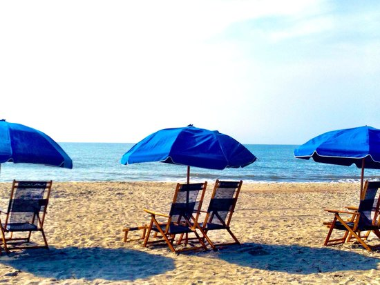 The Westin Hilton Head Island Resort & Spa : The beach!