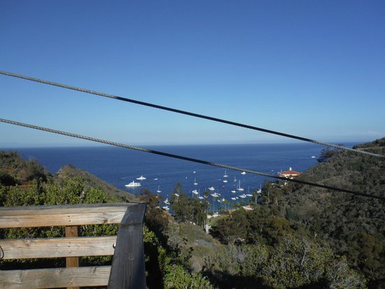 Catalina Island Company: View from the 3rd platform