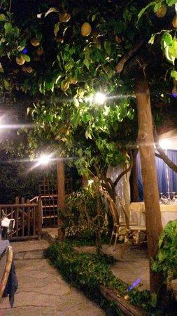 Costa Diva Restaurant: Si cena sotto  i limoni