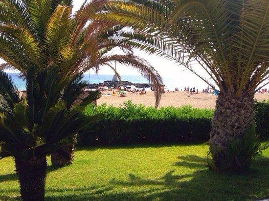 Paloma Beach Apartments : Los Cristianos