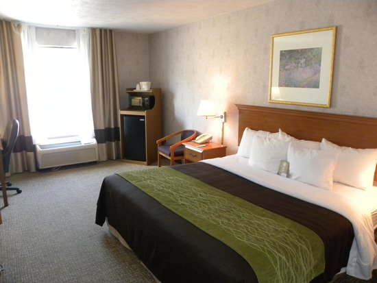 Comfort Inn Huntingdon: Guest Room