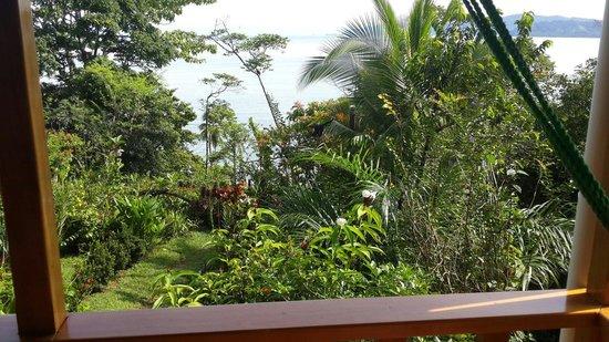 Casa Horizontes Corcovado: Balcon Casa Horizontes Drake Bay