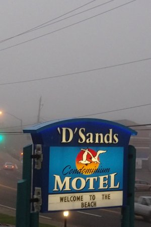 D Sands Condominium Motel : D Sands--right off 101
