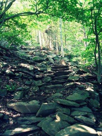 Humpback Rocks Visitor Center and Mountain Farm: Humpback Rocks