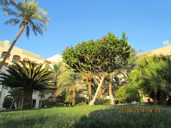 InterContinental Aqaba Resort : Outside view