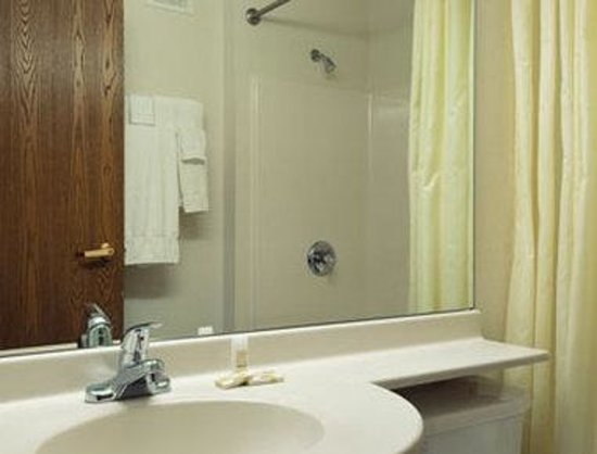 Microtel Inn & Suites by Wyndham Owatonna: Bathroom